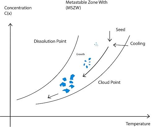 Kristallbildung innerhalb einer Metastabilen Zone